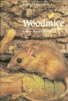 Wood Mice and Yellow Necked Mice